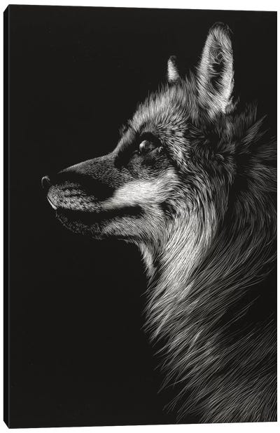 Black Glimpse V Canvas Art Print