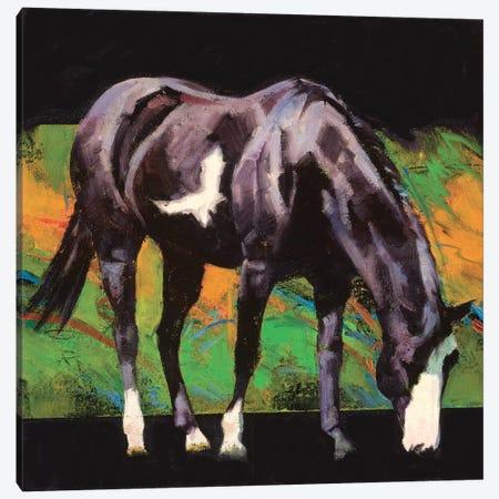 Color Square II Canvas Print #JTC27} by Julie T. Chapman Canvas Artwork