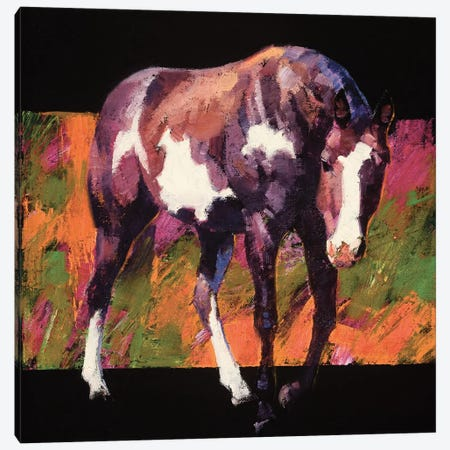 Color Square III Canvas Print #JTC28} by Julie T. Chapman Canvas Art Print