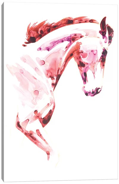 Garnet Horse I Canvas Art Print
