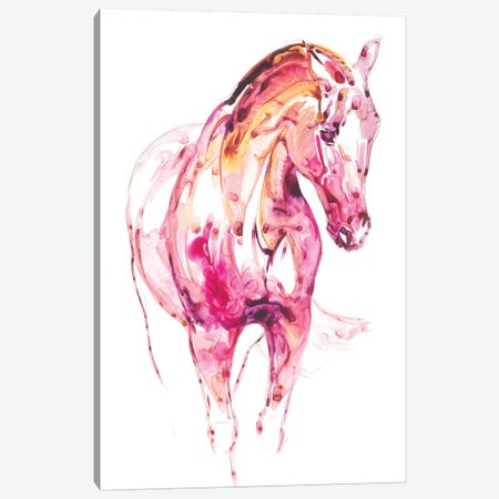 Garnet Horse III Canvas Print #JTC32} by Julie T. Chapman Canvas Art