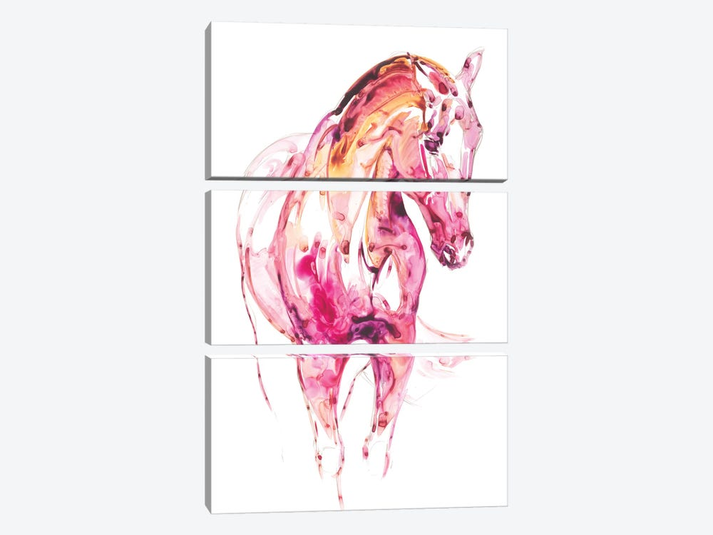 Garnet Horse III 3-piece Canvas Artwork