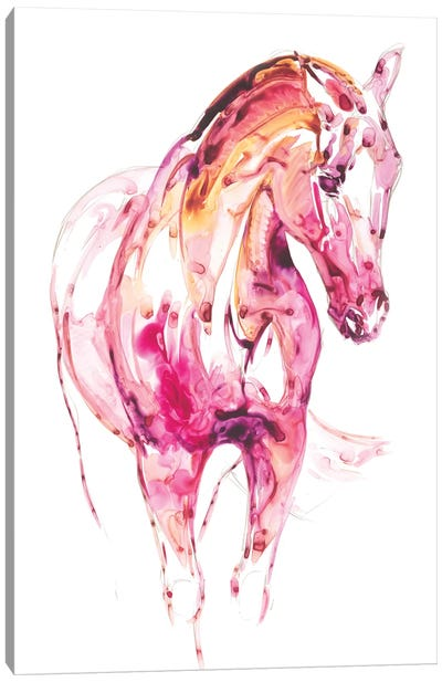Garnet Horse III Canvas Art Print
