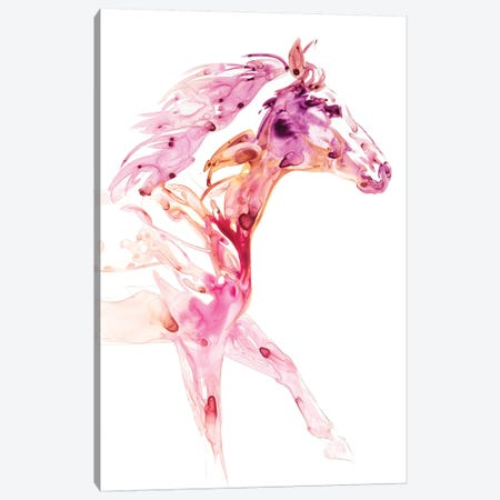 Garnet Horse IV Canvas Print #JTC33} by Julie T. Chapman Canvas Wall Art