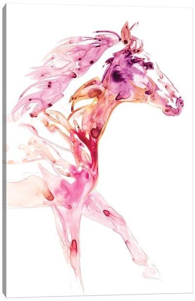 Garnet Horse IV Canvas Art Print