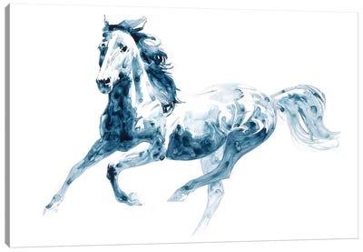 Sapphire Gallop II Canvas Art Print