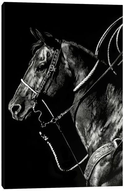 Scratchboard Rodeo V Canvas Art Print