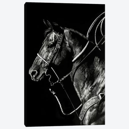 Scratchboard Rodeo V 3-Piece Canvas #JTC42} by Julie T. Chapman Canvas Art Print