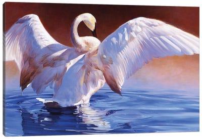 Boudoir Canvas Art Print