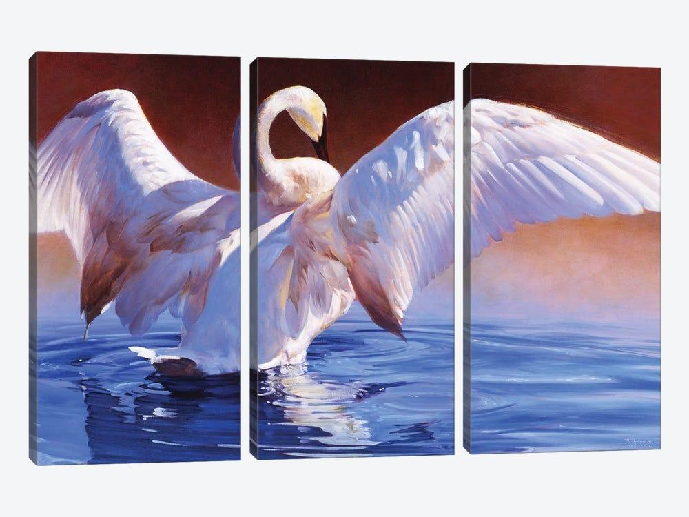 Boudoir by Julie T. Chapman 3-piece Canvas Artwork