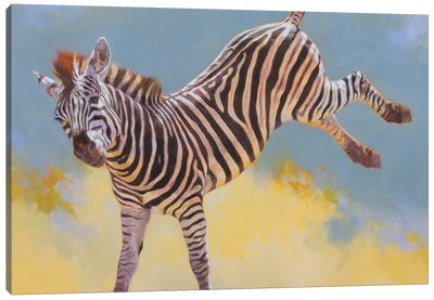 Bucking Zebra Canvas Art Print
