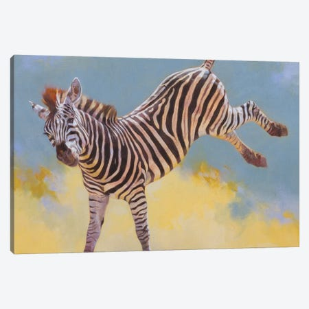 Bucking Zebra Canvas Print #JTC48} by Julie T. Chapman Canvas Print