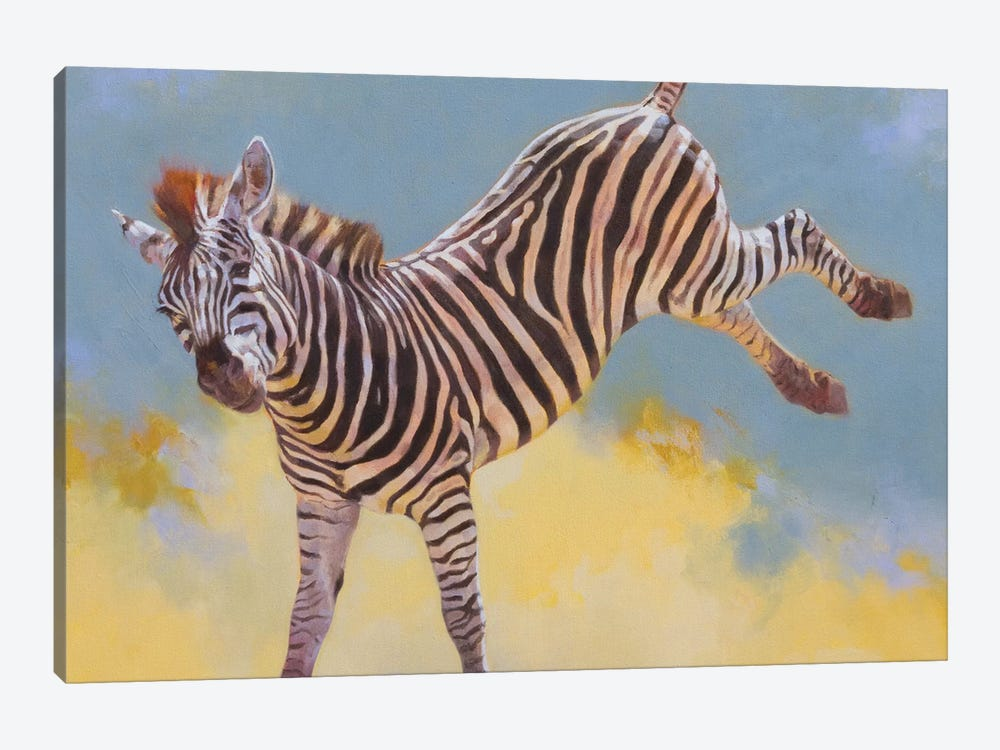 Bucking Zebra by Julie T. Chapman 1-piece Canvas Print