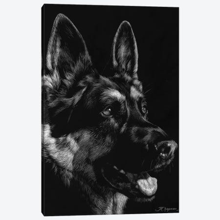 Canine Scratchboard I Canvas Print #JTC49} by Julie T. Chapman Canvas Art Print