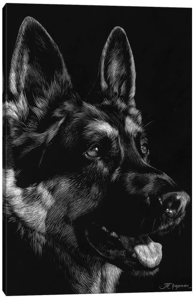 Canine Scratchboard I Canvas Art Print