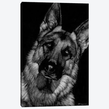Canine Scratchboard II Canvas Print #JTC50} by Julie T. Chapman Canvas Artwork