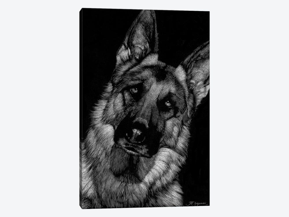 Canine Scratchboard II by Julie T. Chapman 1-piece Canvas Artwork