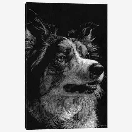 Canine Scratchboard IV Canvas Print #JTC52} by Julie T. Chapman Canvas Art