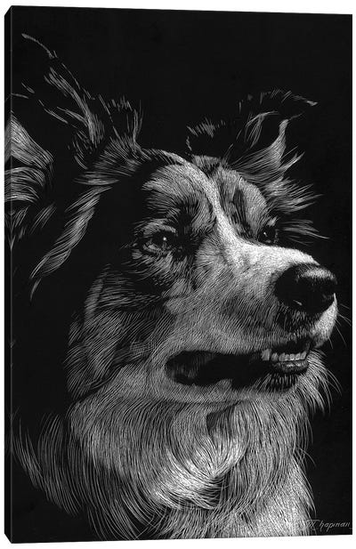 Canine Scratchboard IV Canvas Art Print