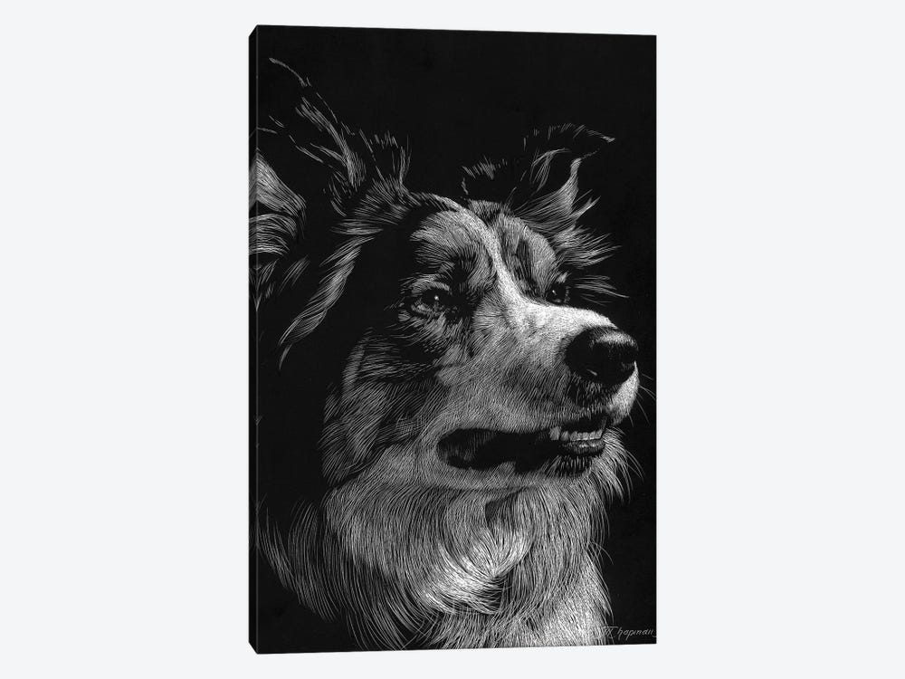 Canine Scratchboard IV 1-piece Canvas Artwork