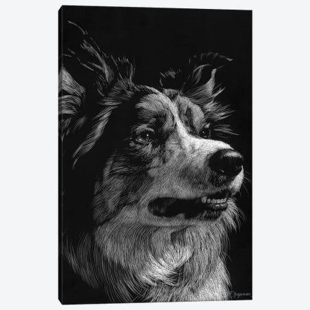 Canine Scratchboard IV Canvas Print #JTC52} by Julie T. Chapman Canvas Art