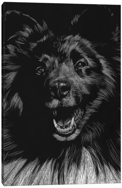 Canine Scratchboard IX Canvas Art Print