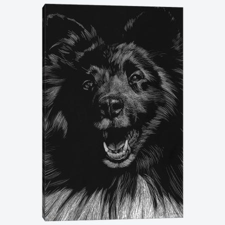 Canine Scratchboard IX Canvas Print #JTC53} by Julie T. Chapman Canvas Art