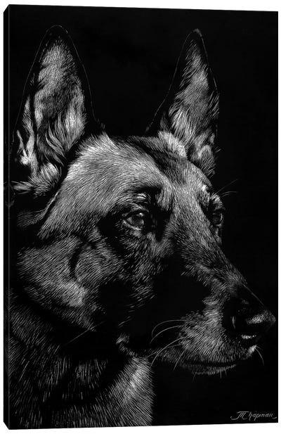 Canine Scratchboard V Canvas Art Print