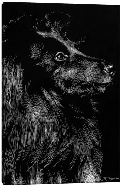 Canine Scratchboard VI Canvas Art Print