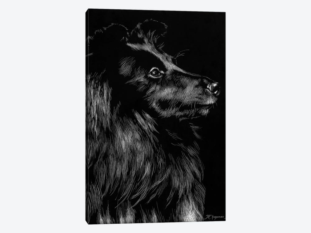 Canine Scratchboard VI by Julie T. Chapman 1-piece Canvas Print