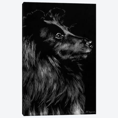 Canine Scratchboard VI Canvas Print #JTC55} by Julie T. Chapman Canvas Art Print