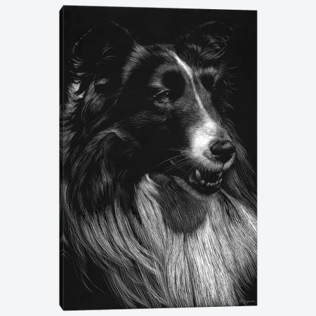 Canine Scratchboard VII Canvas Print #JTC56} by Julie T. Chapman Canvas Print
