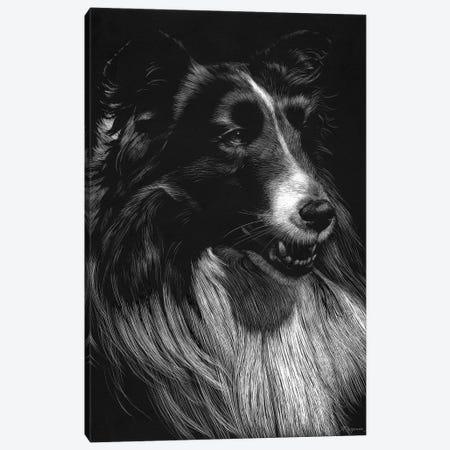 Canine Scratchboard VII Canvas Print #JTC56} by Julie T. Chapman Canvas Print