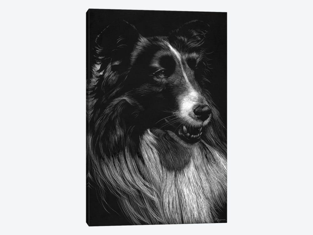 Canine Scratchboard VII by Julie T. Chapman 1-piece Canvas Wall Art