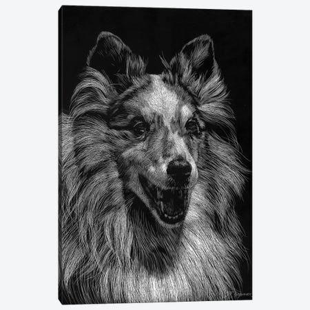 Canine Scratchboard VIII 3-Piece Canvas #JTC57} by Julie T. Chapman Canvas Art Print