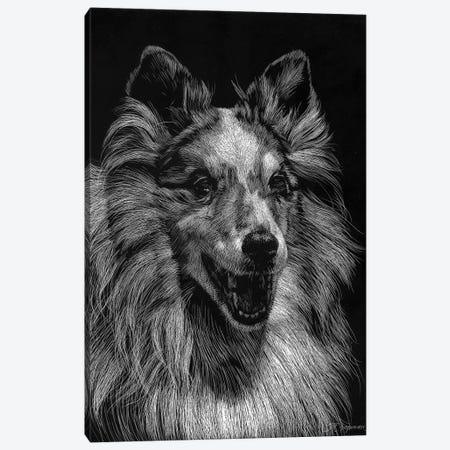 Canine Scratchboard VIII Canvas Print #JTC57} by Julie T. Chapman Canvas Art Print
