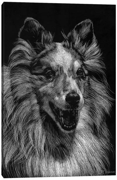 Canine Scratchboard VIII Canvas Art Print