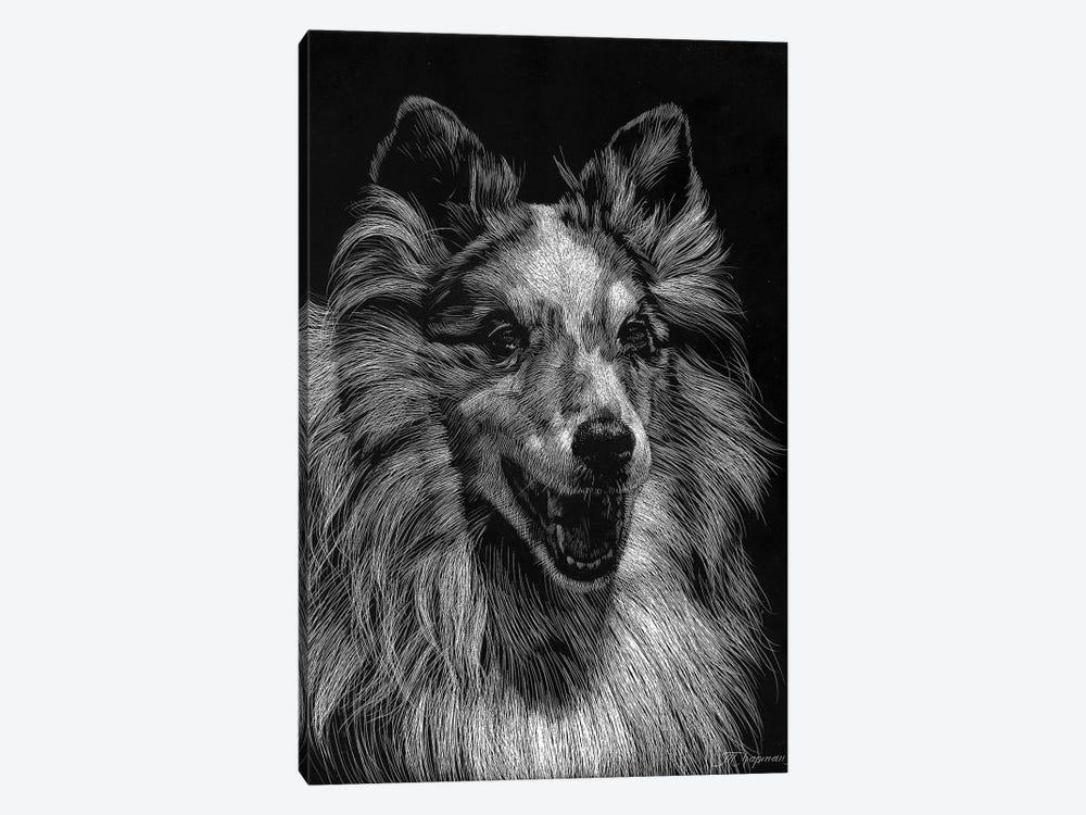 Canine Scratchboard VIII by Julie T. Chapman 1-piece Canvas Art Print