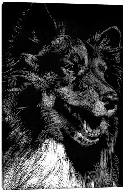 Canine Scratchboard X Canvas Art Print