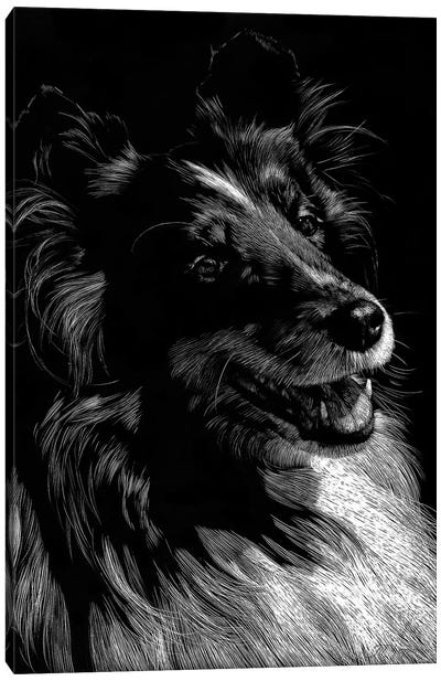 Canine Scratchboard XI Canvas Art Print