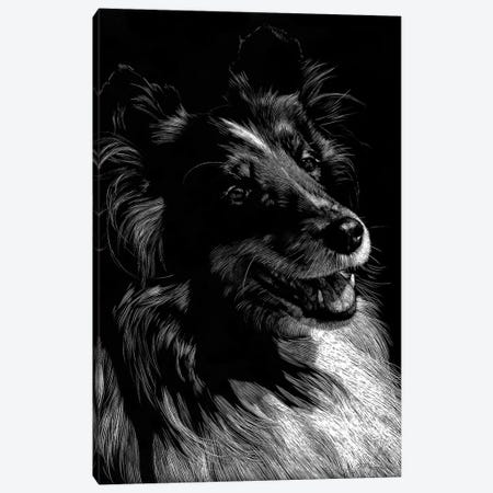 Canine Scratchboard XI Canvas Print #JTC59} by Julie T. Chapman Canvas Art