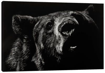 Critic Canvas Art Print