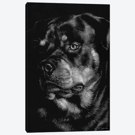 Canine Scratchboard XII Canvas Print #JTC60} by Julie T. Chapman Canvas Art Print