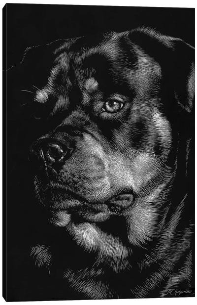 Canine Scratchboard XII Canvas Art Print
