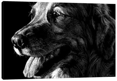 Canine Scratchboard XIV Canvas Art Print