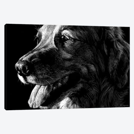 Canine Scratchboard XIV 3-Piece Canvas #JTC62} by Julie T. Chapman Canvas Print