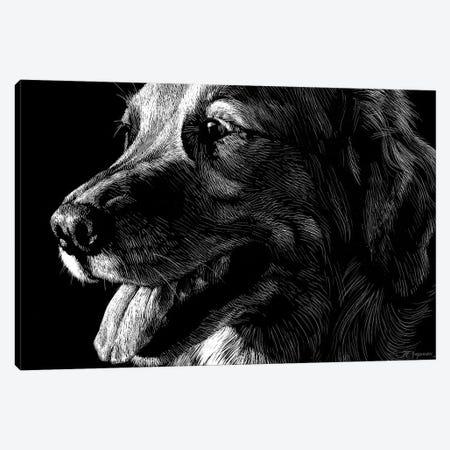 Canine Scratchboard XIV Canvas Print #JTC62} by Julie T. Chapman Canvas Print