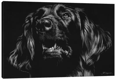 Canine Scratchboard XV Canvas Art Print