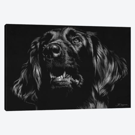 Canine Scratchboard XV 3-Piece Canvas #JTC63} by Julie T. Chapman Canvas Art Print