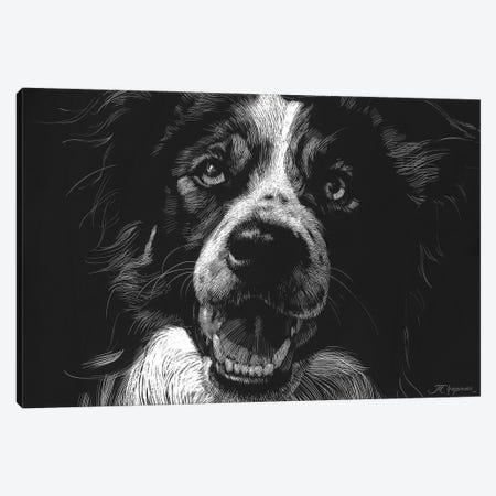 Canine Scratchboard XVIII Canvas Print #JTC64} by Julie T. Chapman Canvas Artwork